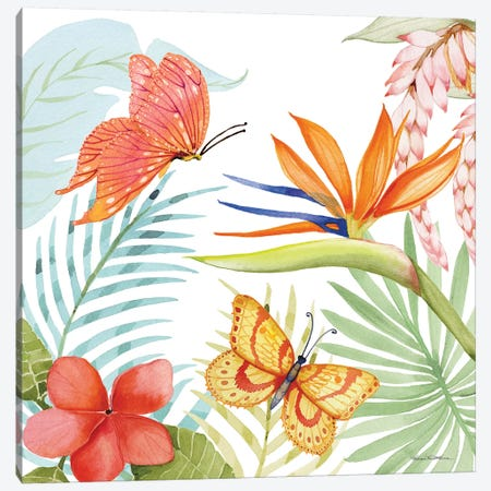 Treasures Of The Tropics IV Canvas Print #WAC8136} by Kathleen Parr McKenna Canvas Wall Art