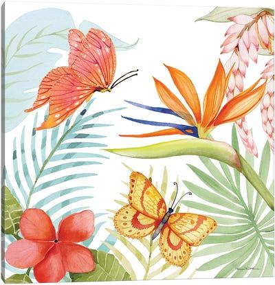 Treasures Of The Tropics IV Canvas Art Print