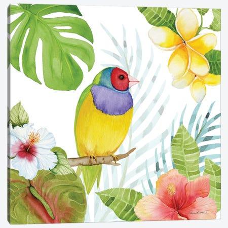 Treasures Of The Tropics V Canvas Print #WAC8137} by Kathleen Parr McKenna Canvas Art