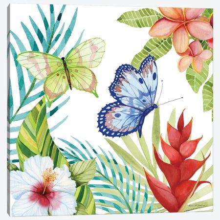 Treasures Of The Tropics VI Canvas Print #WAC8138} by Kathleen Parr McKenna Canvas Art Print