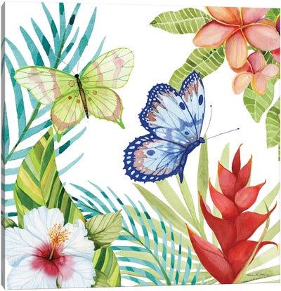 Treasures Of The Tropics VI Canvas Art Print