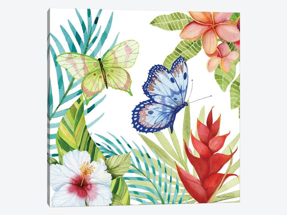 Treasures Of The Tropics VI by Kathleen Parr McKenna 1-piece Canvas Print