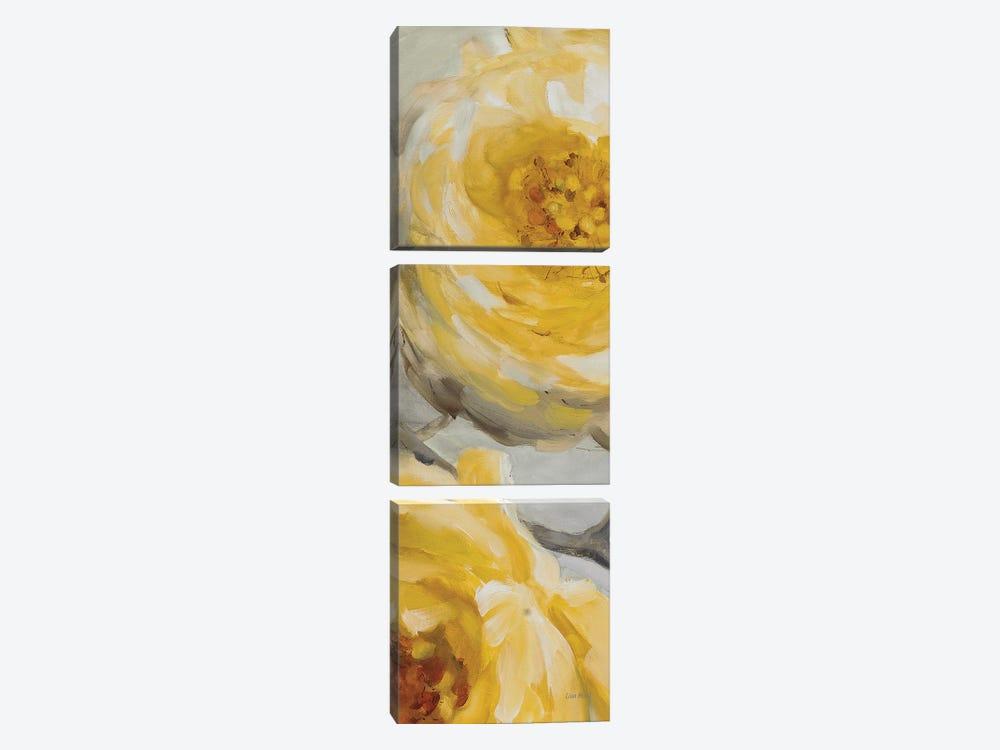 Sunshine XIII by Lisa Audit 3-piece Canvas Art Print