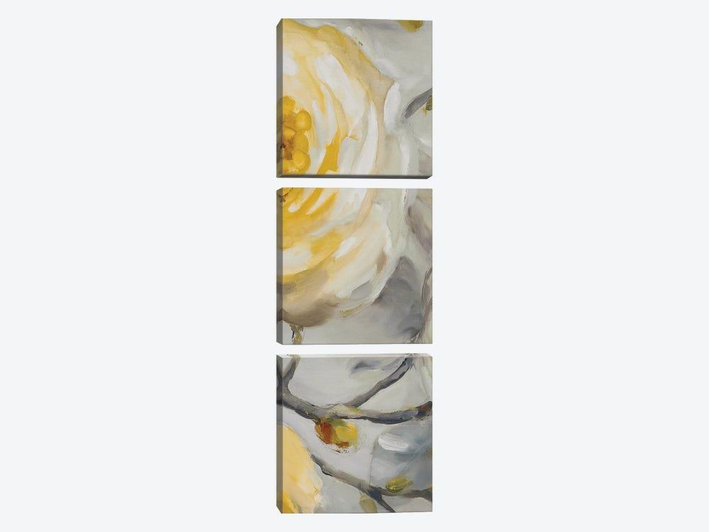 Sunshine XIV by Lisa Audit 3-piece Canvas Art