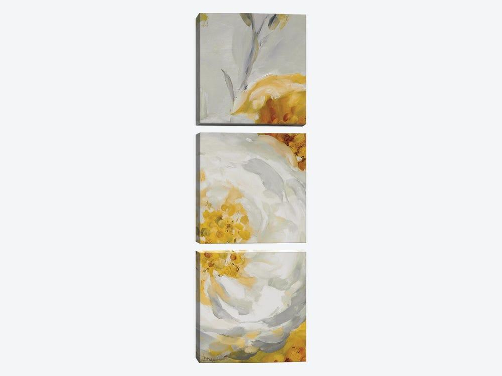 Sunshine XV by Lisa Audit 3-piece Art Print