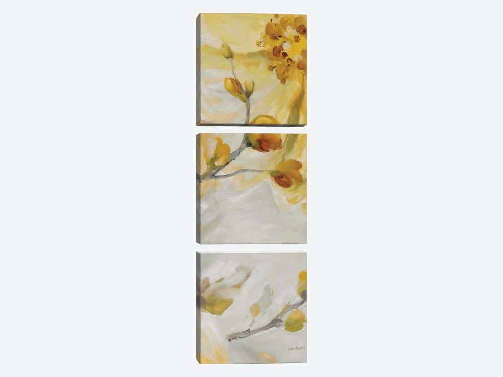 Sunshine XVI by Lisa Audit 3-piece Canvas Art
