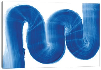 S Curve Canvas Art Print