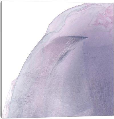 Swish Of Magenta I Canvas Art Print