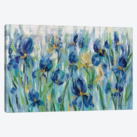 Iris Flower Bed Canvas Print #WAC8245} by Silvia Vassileva Canvas Art