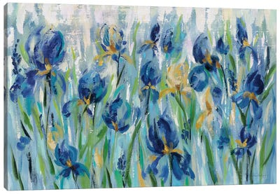 Iris Flower Bed Canvas Art Print