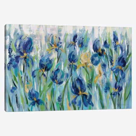 Iris Flower Bed Canvas Print #WAC8245} by Silvia Vassileva Canvas Art