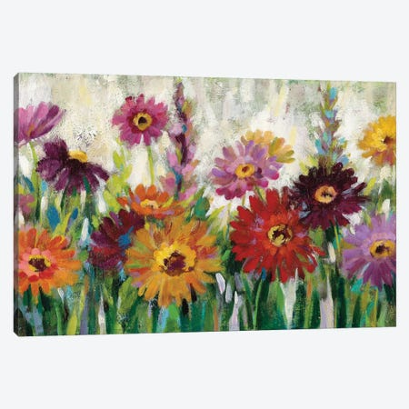Jewel Daisy Gerbera Canvas Print #WAC8246} by Silvia Vassileva Canvas Wall Art