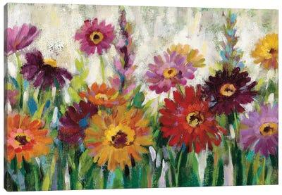 Jewel Daisy Gerbera Canvas Art Print