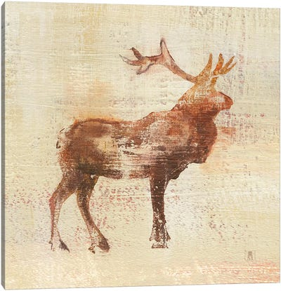 Elk Study Canvas Art Print