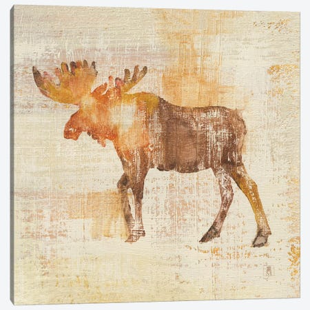 Moose Study Canvas Print #WAC8266} by Studio Mousseau Canvas Art