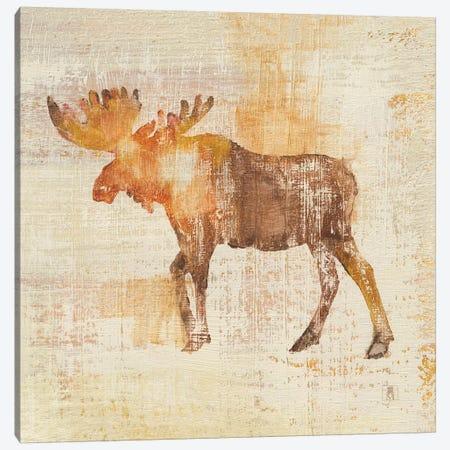 Moose Study Canvas Print #WAC8266} by Studio Mousseau Canvas Art