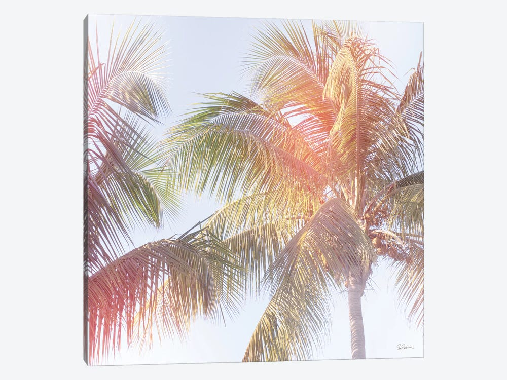 Dream Palm III by Sue Schlabach 1-piece Canvas Art