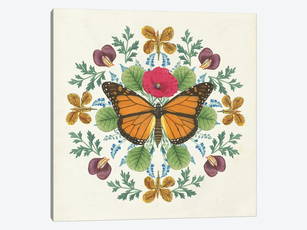 Butterfly Mandala I by Wild Apple Portfolio 1-piece Canvas Art
