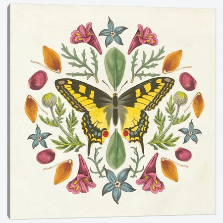 Butterfly Mandala III Canvas Print #WAC8336} by Wild Apple Portfolio Canvas Art