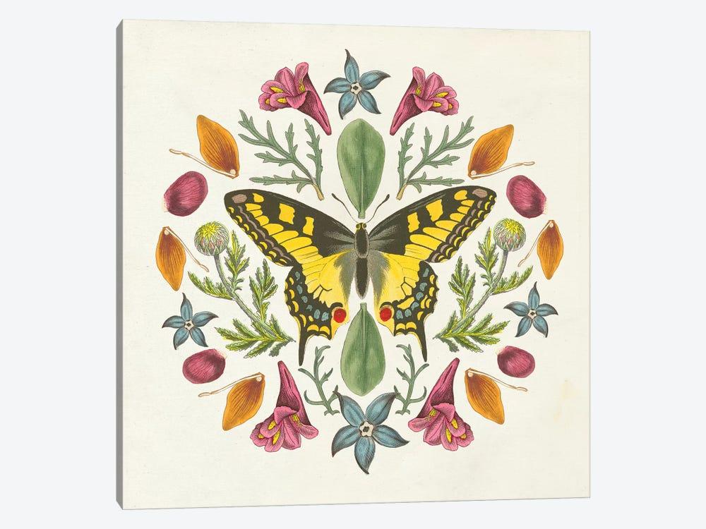 Butterfly Mandala III by Wild Apple Portfolio 1-piece Canvas Artwork
