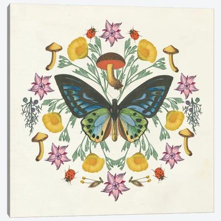 Butterfly Mandala IV Canvas Print #WAC8337} by Wild Apple Portfolio Canvas Art