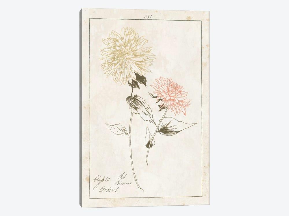 Flowers On White With Words IV by Wild Apple Portfolio 1-piece Canvas Print