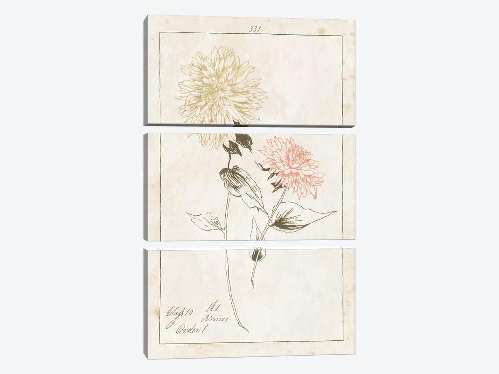 Flowers On White With Words IV by Wild Apple Portfolio 3-piece Art Print