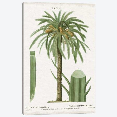 Island Botanicals II Canvas Print #WAC8341} by Wild Apple Portfolio Canvas Wall Art