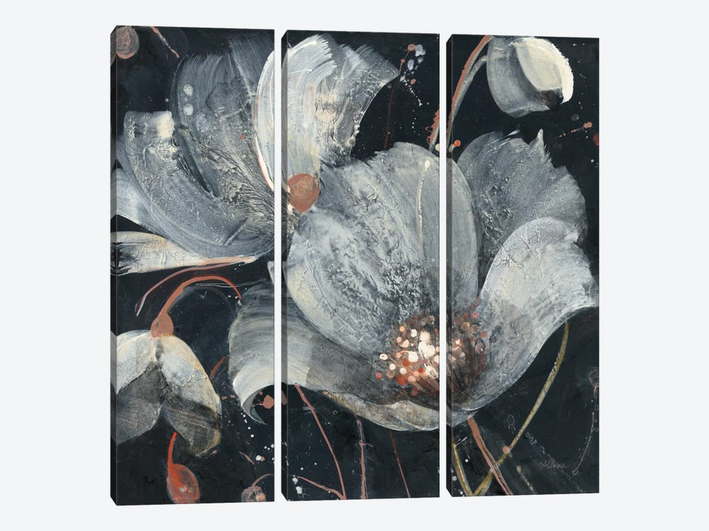 Translucent Poppies by Albena Hristova 3-piece Canvas Wall Art