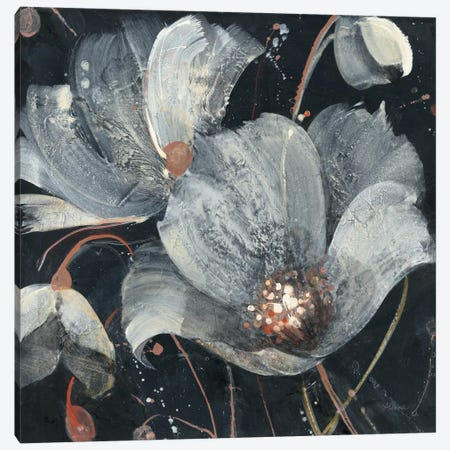Translucent Poppies Canvas Print #WAC8352} by Albena Hristova Canvas Art Print