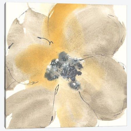Flower Tones I Canvas Print #WAC8373} by Chris Paschke Canvas Art Print