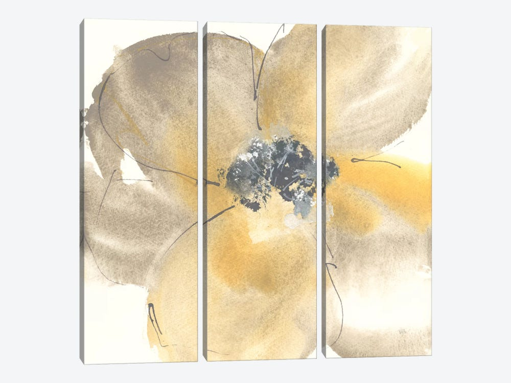 Flower Tones II by Chris Paschke 3-piece Canvas Wall Art