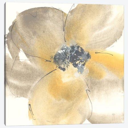 Flower Tones II Canvas Print #WAC8374} by Chris Paschke Canvas Wall Art