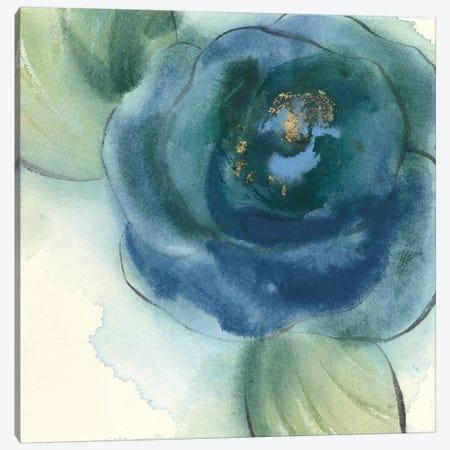 Wannabe Poppies I Canvas Print #WAC8380} by Chris Paschke Canvas Wall Art