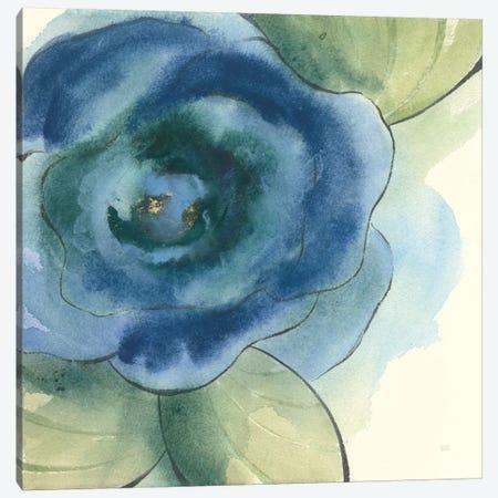 Wannabe Poppies III Canvas Print #WAC8382} by Chris Paschke Canvas Art