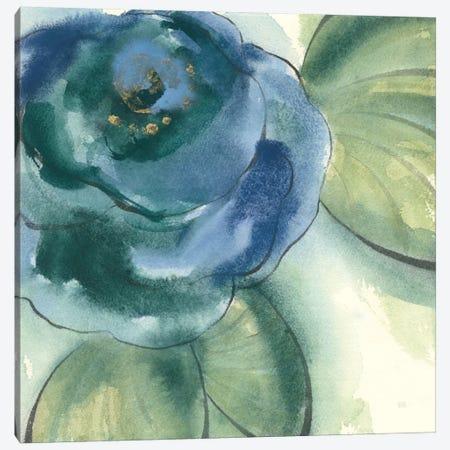 Wannabe Poppies V Canvas Print #WAC8384} by Chris Paschke Canvas Art Print