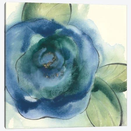 Wannabe Poppies VI Canvas Print #WAC8385} by Chris Paschke Art Print