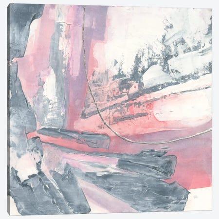 Whitewashed Blush I Canvas Print #WAC8386} by Chris Paschke Art Print
