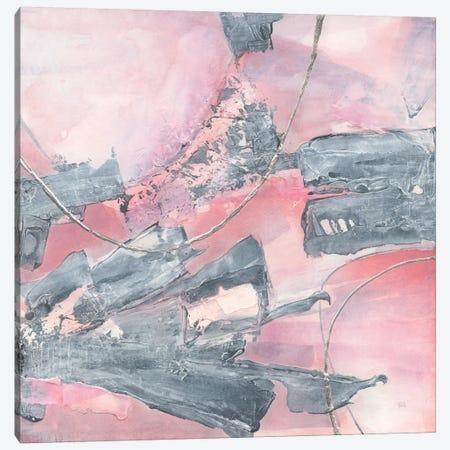 Whitewashed Blush III Canvas Print #WAC8388} by Chris Paschke Canvas Art