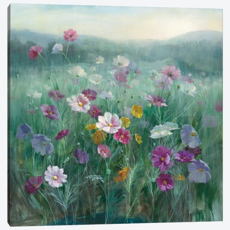 Cosmos At Dawn Canvas Print #WAC8397} by Danhui Nai Canvas Artwork