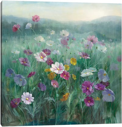 Cosmos At Dawn Canvas Art Print