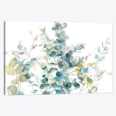Eucalyptus On White I Canvas Print #WAC8398} by Danhui Nai Canvas Print