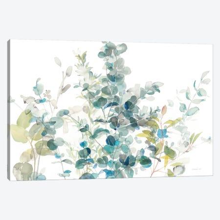 Eucalyptus On White I Canvas Print #WAC8398} by Danhui Nai Canvas Print