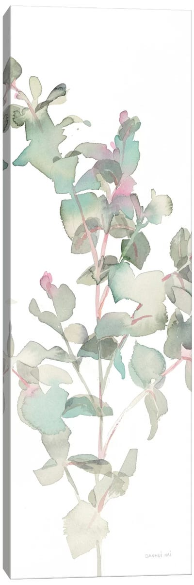 Eucalyptus On White II Canvas Art Print