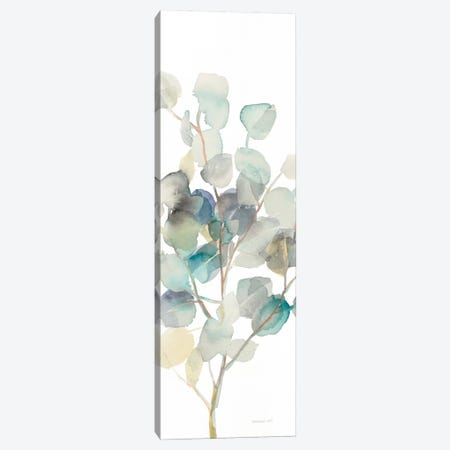 Eucalyptus On White III Canvas Print #WAC8400} by Danhui Nai Canvas Print