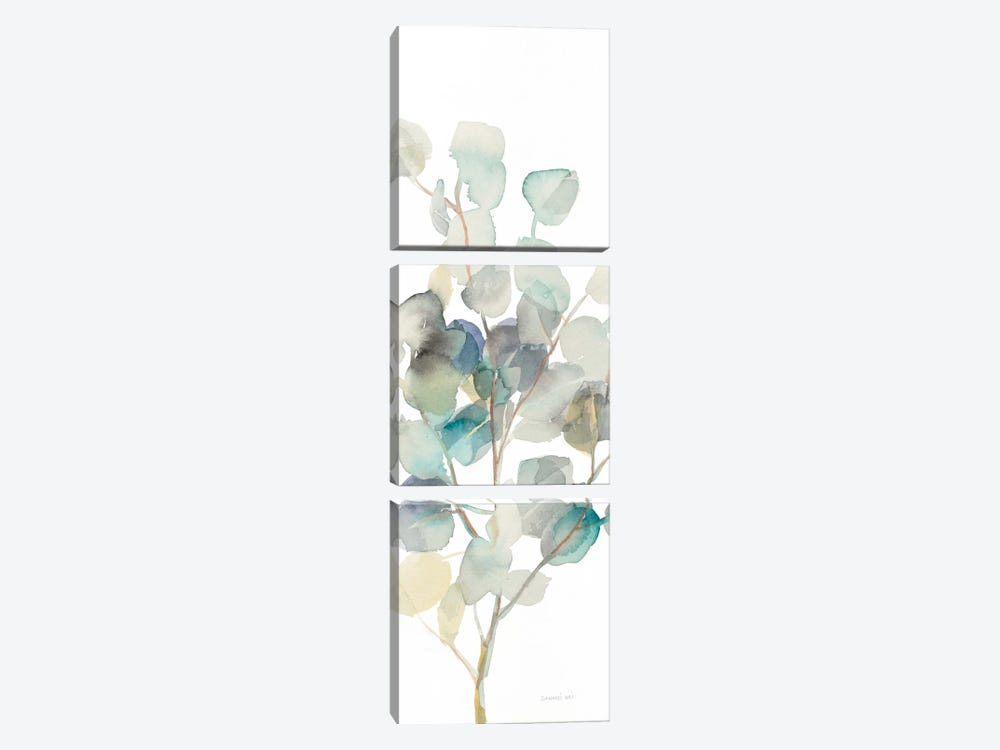 Eucalyptus On White III by Danhui Nai 3-piece Canvas Wall Art