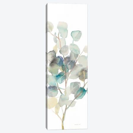 Eucalyptus On White III Canvas Print #WAC8400} by Danhui Nai Canvas Print