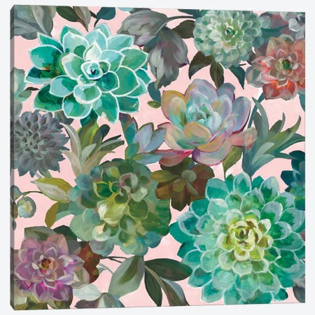 Floral Succulents On Pink Canvas Print #WAC8401} by Danhui Nai Canvas Print