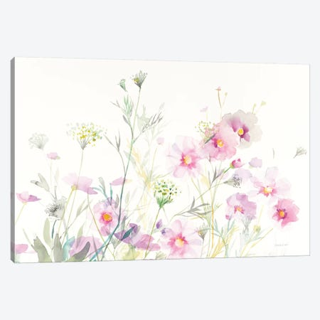 Queen Anne's Lace And Cosmos On White I Canvas Print #WAC8402} by Danhui Nai Canvas Print