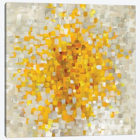 Summer Blocks Canvas Print #WAC8404} by Danhui Nai Canvas Artwork